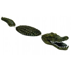 Floating Alligator