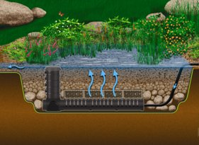 Wetland Filtration