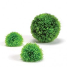 biOrb Green Topiary Ball Set