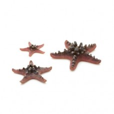 biOrb Pink Starfish Set