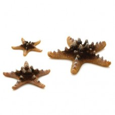 biOrb Natural Starfish Set